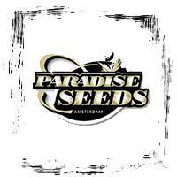 Paradise Seeds